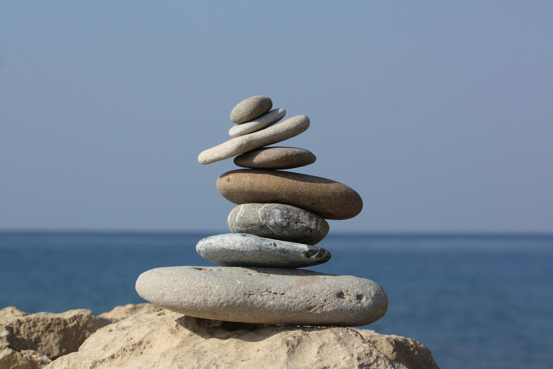 selfless_selfish_balancing_act