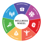 What is Whole-Person Wellness and Why Is It Important?